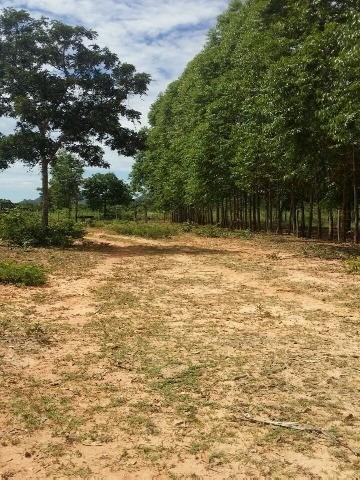 Fazenda, Venda, Buritizeiro -buritizeiroa/sp - Fa00026 - 3039674