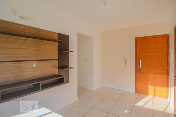 Apartamento Para Aluguel - Cavalhada, 2 Quartos, 50 - 893118702