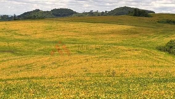 Fazenda De Terra Roxa A Venda Próximo A Nova Tebas!!! - Mi261
