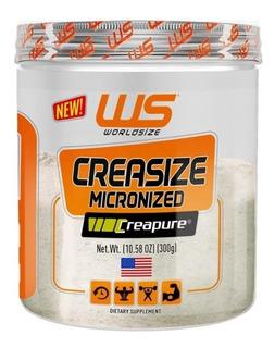 Crea Size Micronized Da Worldsize Contém Creatina Micronizad