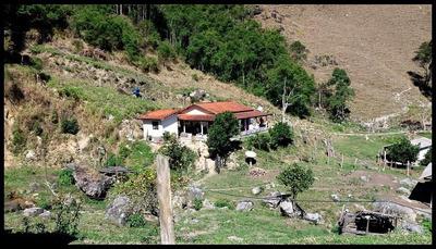 Oportunidade Fazenda Produtiva Natividade Da Serra Sp Nts-1