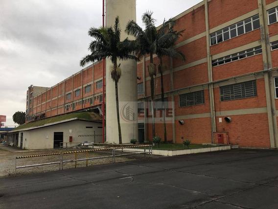 Galpão Armazém São Bernardo Anchieta - Ga0192