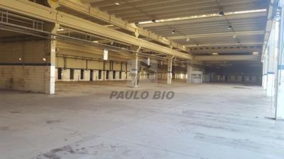 Galpao Industrial - Cidade Industrial Satelite De Sao Paulo - Ref: 4084 - V-4084