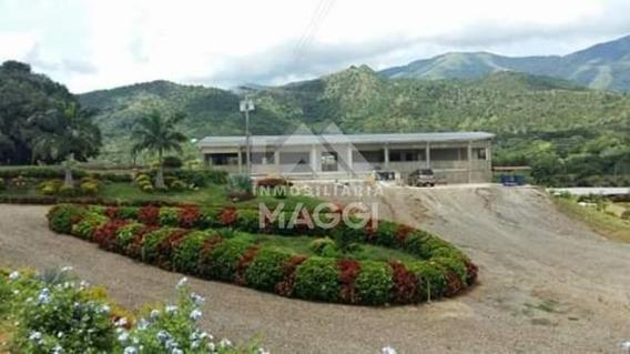 Inmobiliaria Maggi Vende Finca En San Juan De Los Morros
