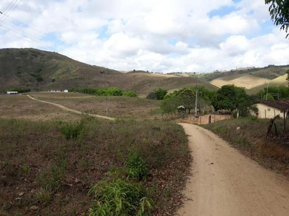 Sítio / Chácara Para Venda Em São José Da Laje, Zona Rural - Fz - 02_1-1352394