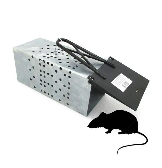 Ratoeira Gaiola Grande Com Mola Para Ratos E Ratazanas