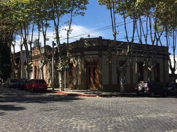 Locales Comerciales Alquiler Colonia Del Sacramento