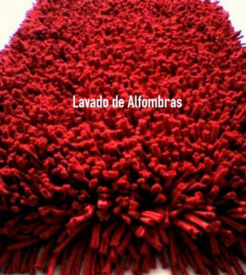 Aseo Y Lavado De Alfombras, Colchones Y Tapices Doren