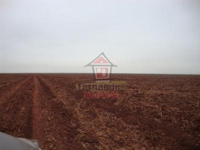 Fazenda Rural À Venda, Centro, Dourados - Fa0053. - Fa0053