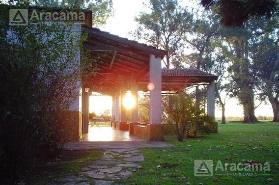 Terreno En Campo Daromy - San Vicente