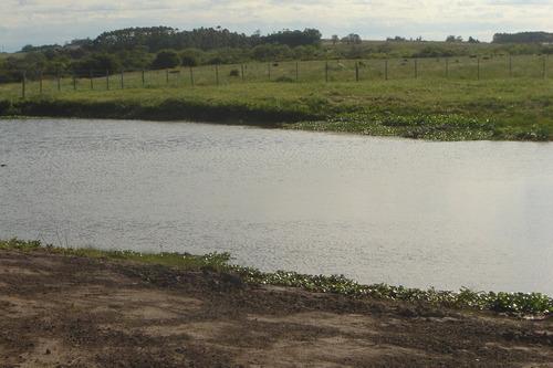 Chacra En Punta Del Este- Ref: 37562