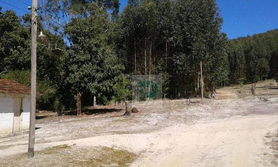 Vendo Sitio Na Cidade De Biritiba Mirim - Si0002