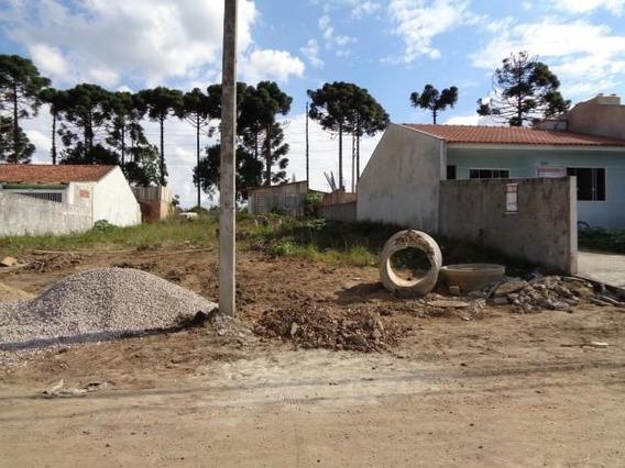 Terreno Para Venda Em São José Dos Pinhais, Rio Pequeno - 120010000_2-587977