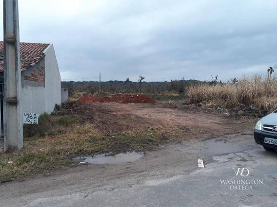 Terreno À Venda, 375 M² Por R$ 90.000,00 - Miringuava - São José Dos Pinhais/pr - Te0205