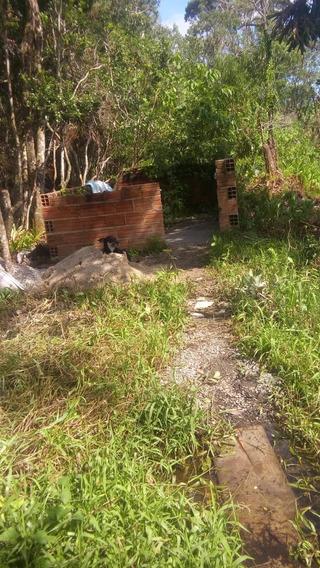 Terreno No Bairro Gaivota Em Itanhaem