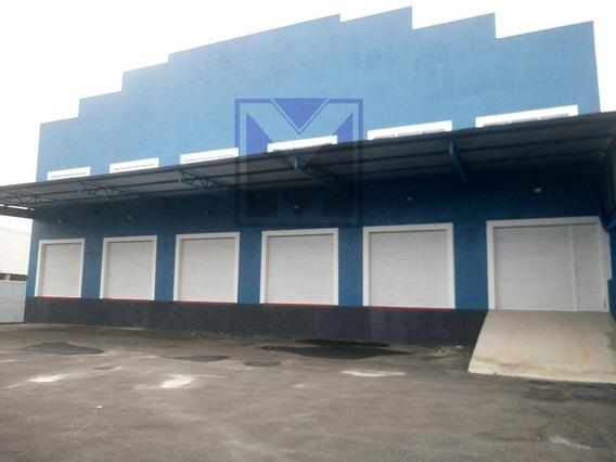 Comercial Para Aluguel, 0 Dormitórios, Jardim Cumbica - Guarulhos - 1008