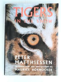 Livro Tigers In The Snow - Ilustrado - Tigres Siberianos