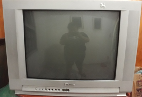 Tv 29 Polegadas Com Conversor Digital C/ Os 2 Controles