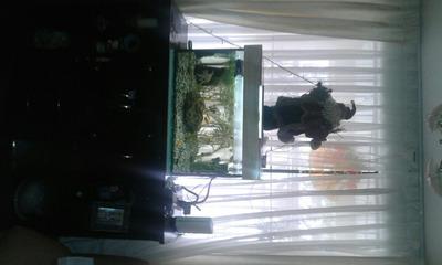 Departamentos En Alquiler En Santiago De Surco