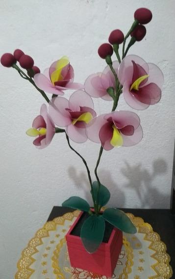Orquídea Vaso Madeira Rosa Choque 2 Galhos Vinho Amarelo