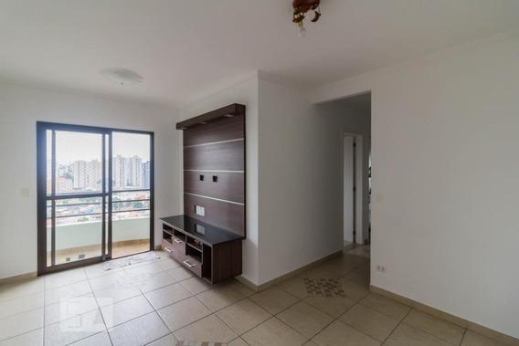 Apartamento Para Aluguel - Vila Augusta, 3 Quartos, 65 - 893010740