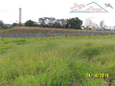 Terrenos Para Alugar Em São Bernardo Do Campo/sp - Alugue O Seu Terrenos Aqui! - 1343091