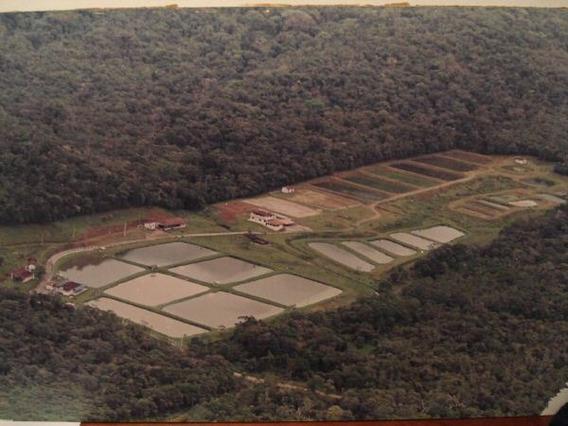 Sitio / Fazenda De Piscicultura Litoral Do Paraná.