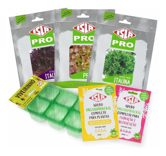 Kit De Sementes Alfaces Frisée Verde E Roxa, E Mimosa Prado