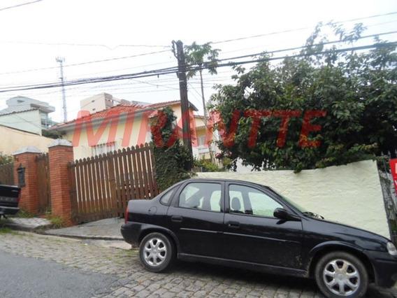 Terreno Em Santana - São Paulo, Sp - 300394