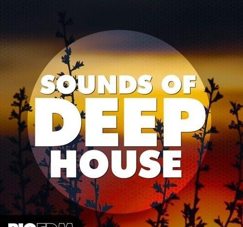 Big Edm - Sounds Of Deep House (wav, Midi, Sylenth1, Spire,