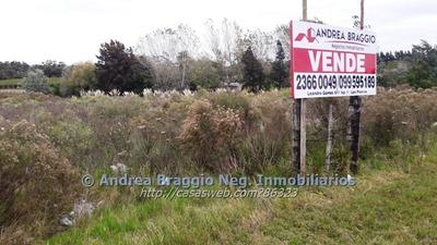 Vendo Terreno Sobre Ruta Nacional 5