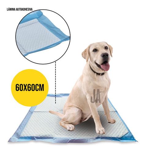100 Pañales Sabanillas Mascotas 60x60 Cm Perro Entrenamiento