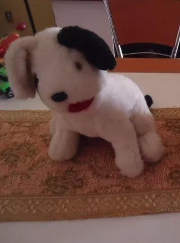 Cachorro Pelúcia Na Cor Branco E Preto