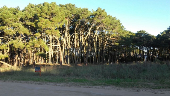 Ref: 1489 - Lote En Venta - Pinamar, Zona Alamos
