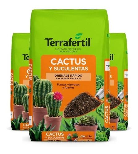 Sustrato Para Cactus Y Suculentas Tierra X 20dm3 Terrafertil