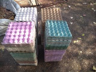 Maple Para Huevos (vacíos) X100 Unidades