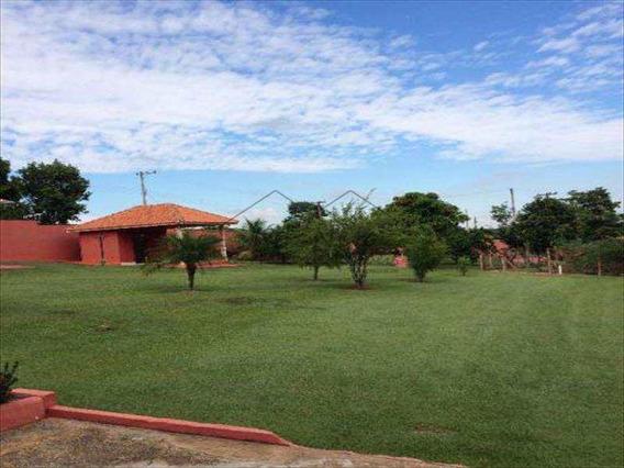 Haras Em Limeira Bairro Área Rural De Limeira - V98600