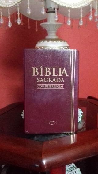 Bíblia Sagrada Evangélica Com Referências - Edição Especial