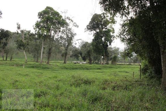 Área Para Venda Em Miracatu, Rural - In009