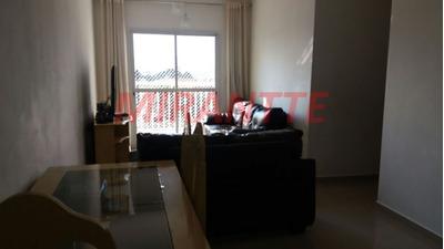Apartamento Em Tucuruvi - São Paulo, Sp - 318576