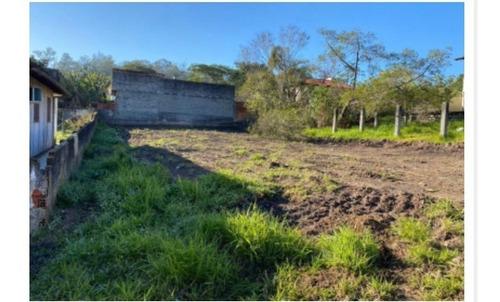 Imagem 1 de 1 de Terreno - Floresta - Ref: 246 - V-246
