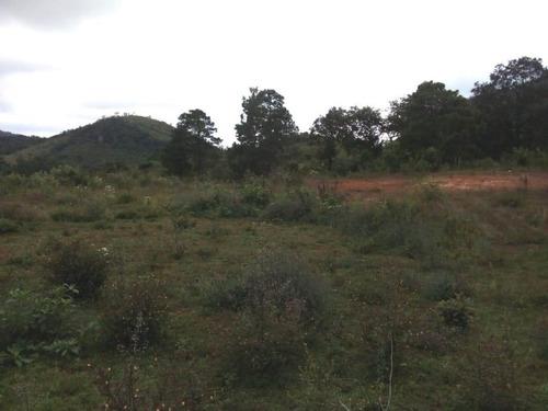 Imagen 1 de 6 de Terreno Rustico En Venta En La Localidad El Manzanillo