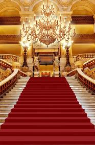 Fundo Fotográfico Tecido Escadaria Tapete Realeza 1,5x2,20m