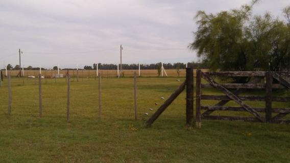 Terrenos En Emprendimiento En Domselaar - Zona Sur