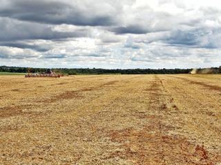 Fazenda Rural, Jardim Maringá, Sinop - Mato Grosso - 221