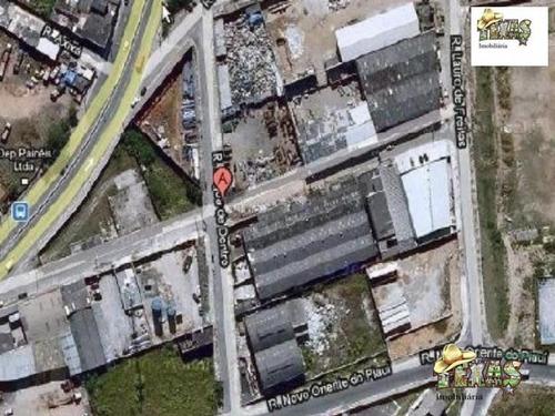 Imagem 1 de 12 de Galpão Vila Sílvia - Gl00032