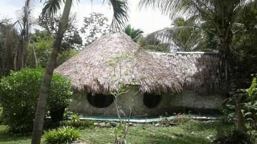 Ex2228 Terreno Campestre En Venta En Lazaro Cardenas En Quintana Roo