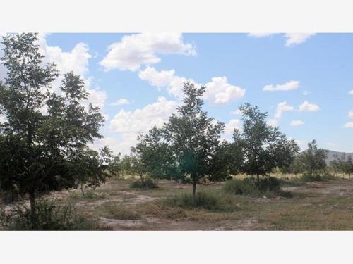 Finca/rancho En Venta En Ejido Cerro Colorado
