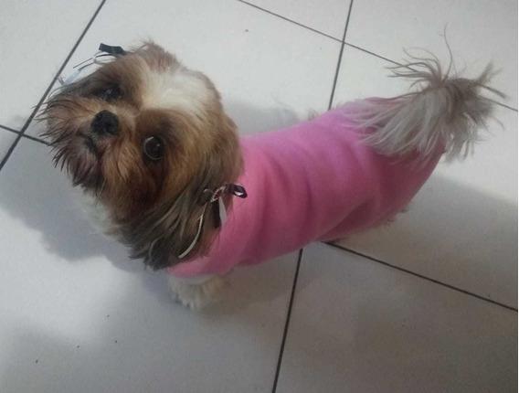 Roupa Para Cachorro Pet Inverno Raça Pequena Soft