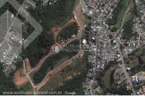 Imagem 1 de 2 de Terreno - Lomba Do Pinheiro - Ref: 296007 - V-296007